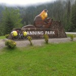 Manning park was pretty wet and cold in June.